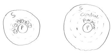esferas dibus1