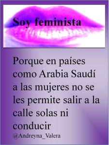 soy feminista 5